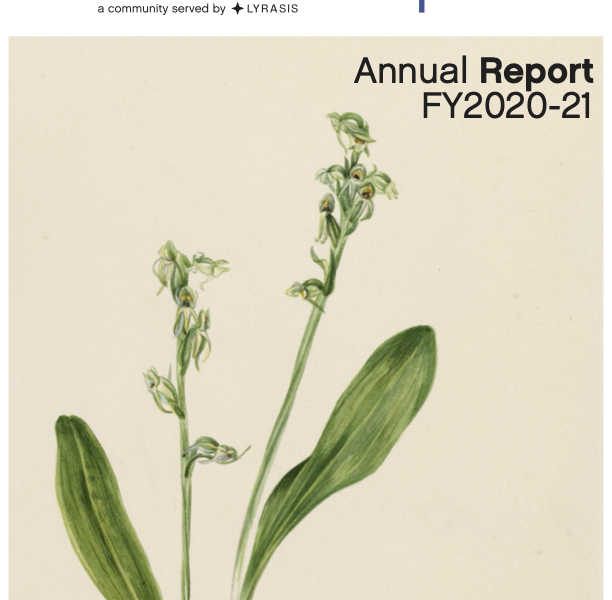 CollectionSpace Annual Report FY2021